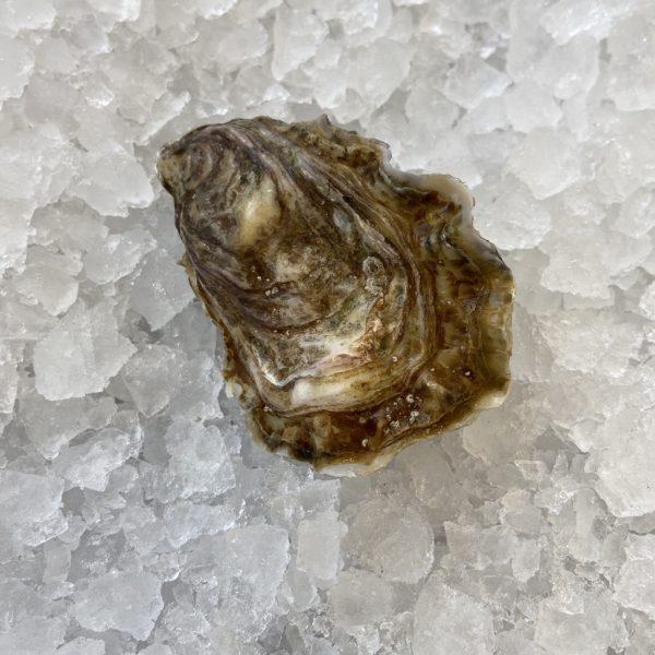 Huîtres de sélection (Irlande)N°3 (1kg)